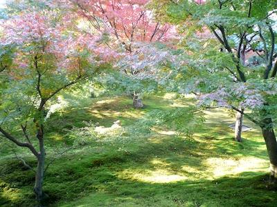 toufuku091126-1.jpg