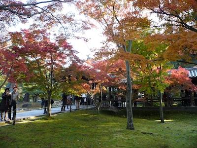 toufuku091127-2.jpg