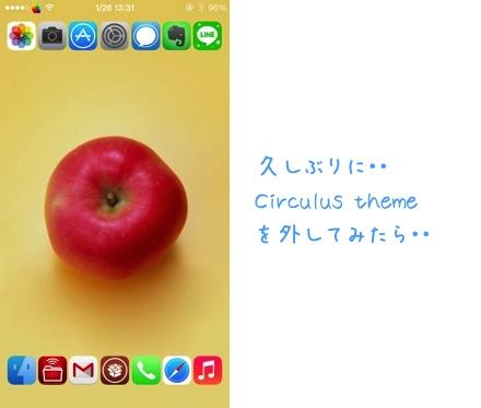 Shrin1401268